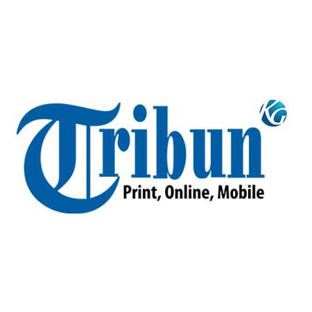 lowongan kerja tribun digital online